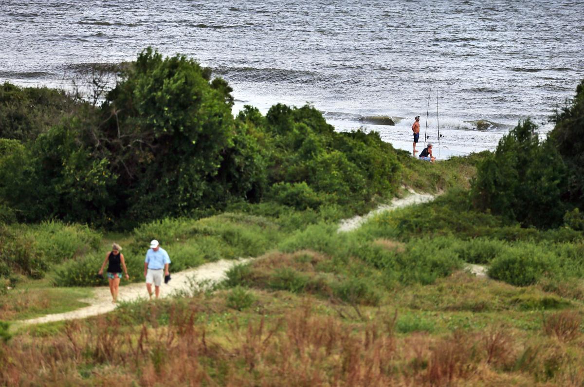 path maritime forest Sullivans Island.jpg