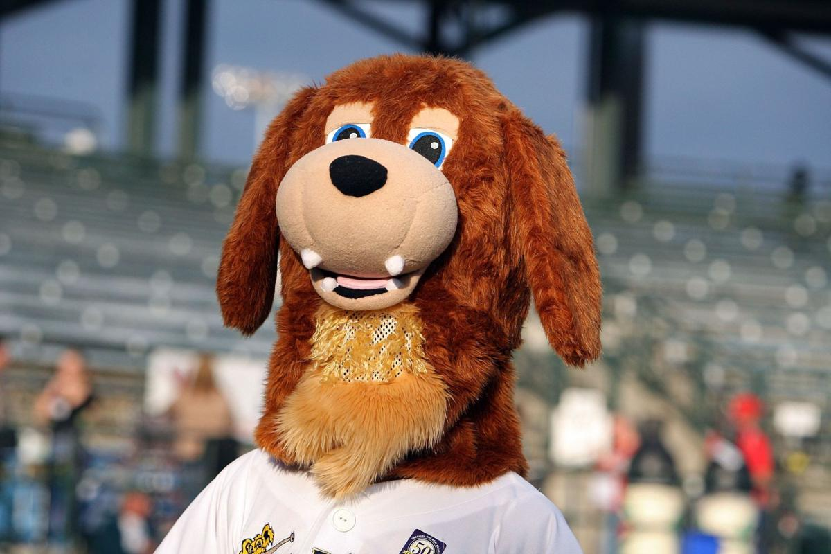 Charleston RiverDogs announce game times for upcoming season