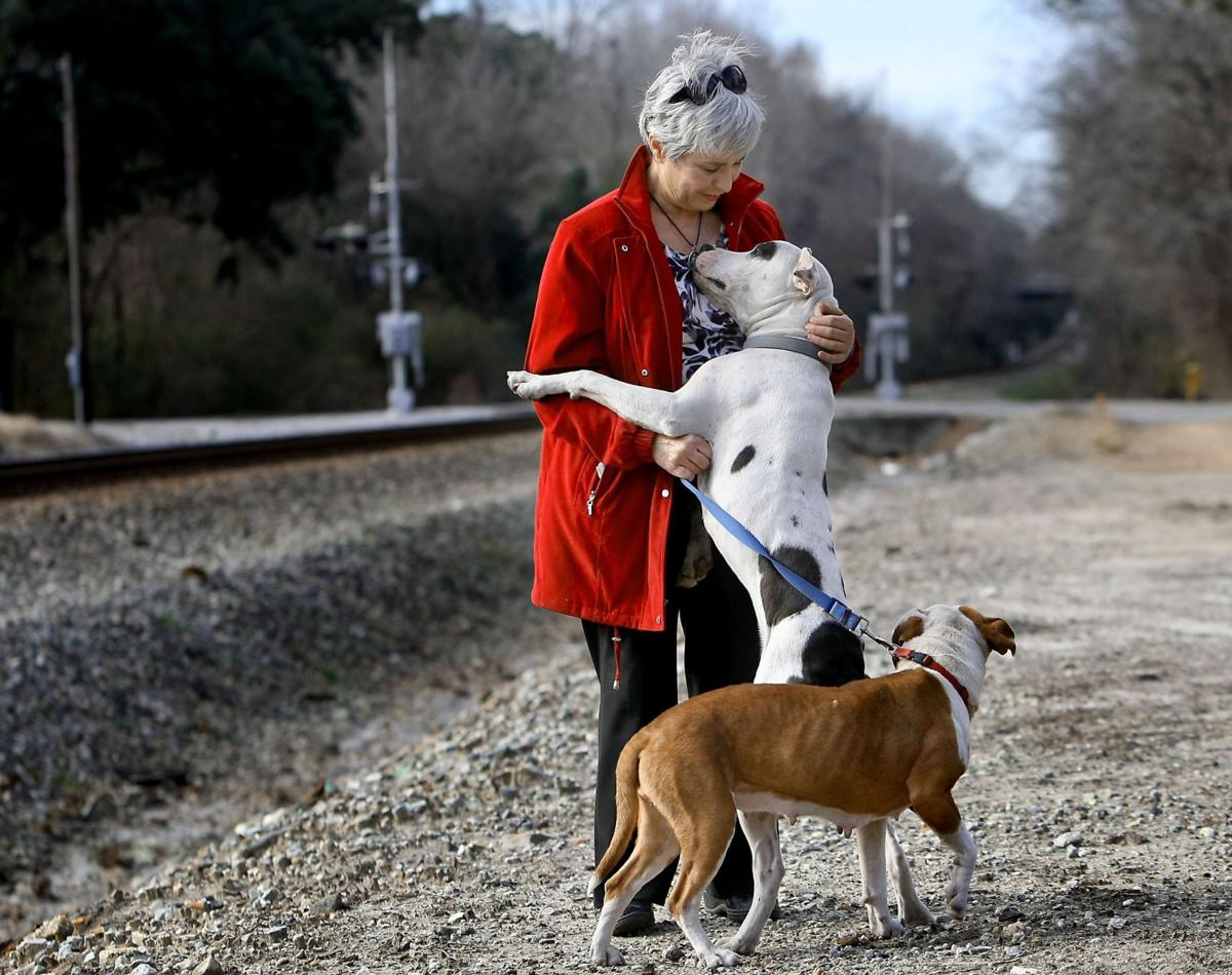 'Pit bull grandma' out to stop dogfighting