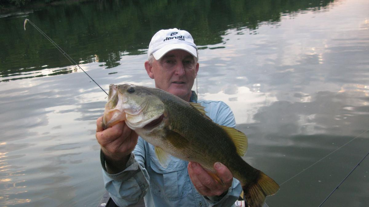 Conditions right for best bass fishing of the year
