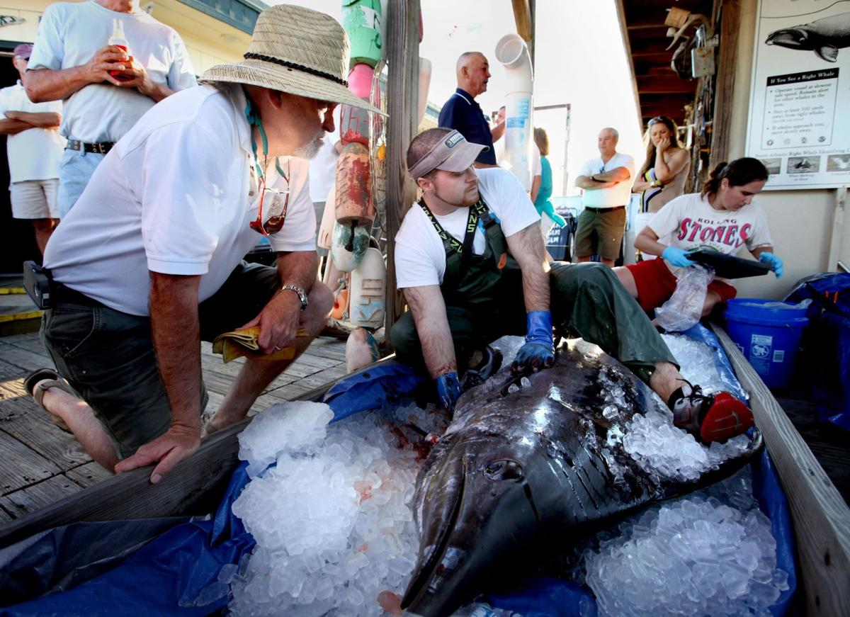 Dolphin, billfish big draws for offshore anglers