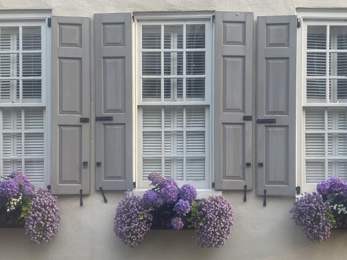 Ann-Auburn Window.jpg