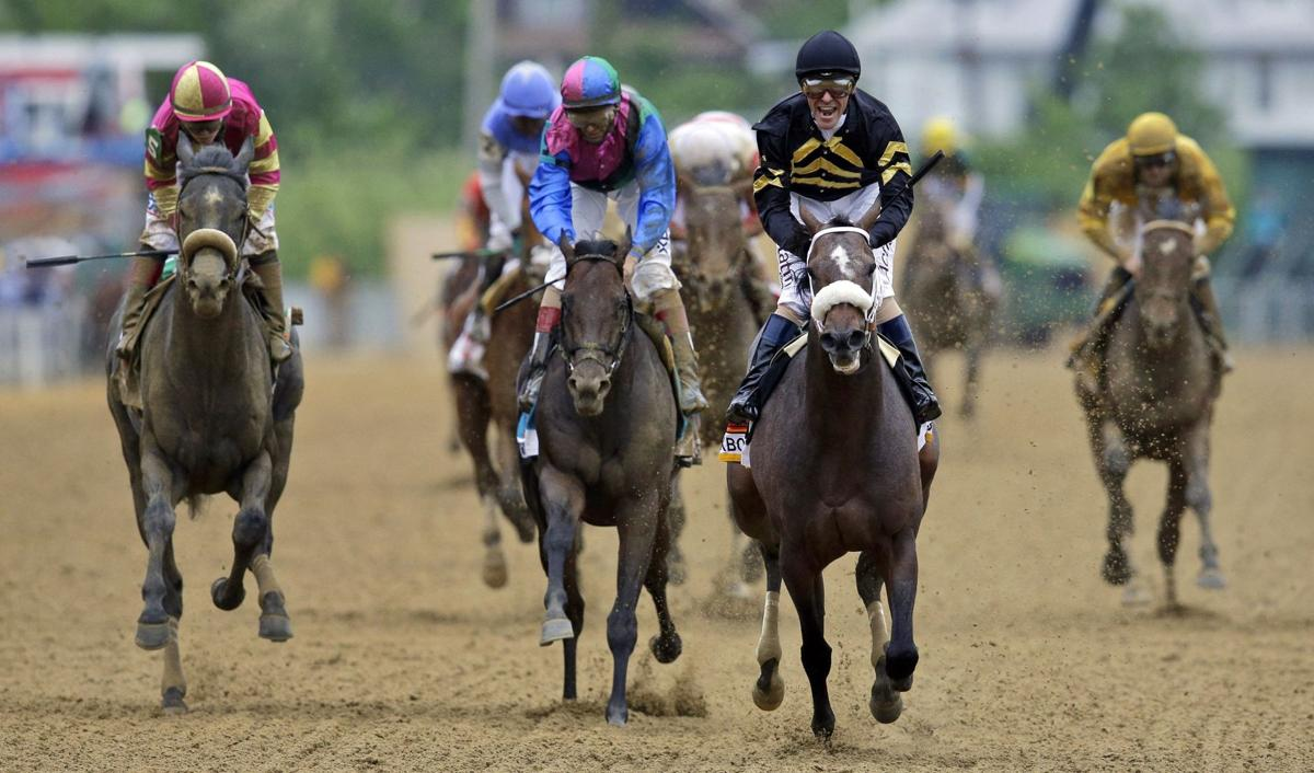 Oxbow wins Preakness; Orb finishes in fourth