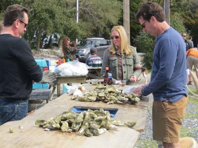 bowen's island oysters