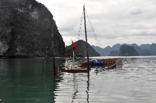 Tour boat sinks in Vietnam; 12 dead from 9 nations
