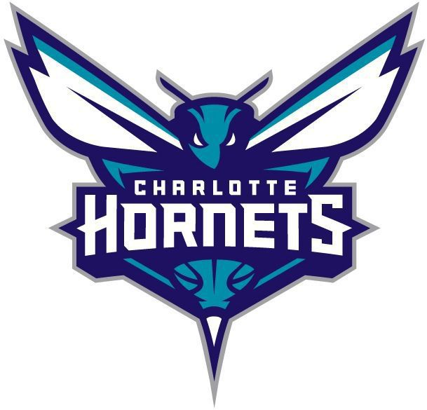 Charleston a candidate for Hornets' D-League team