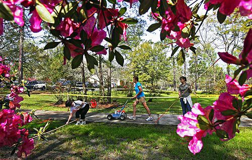 Flowertown Festival ready to bloom | News | postandcourier.com
