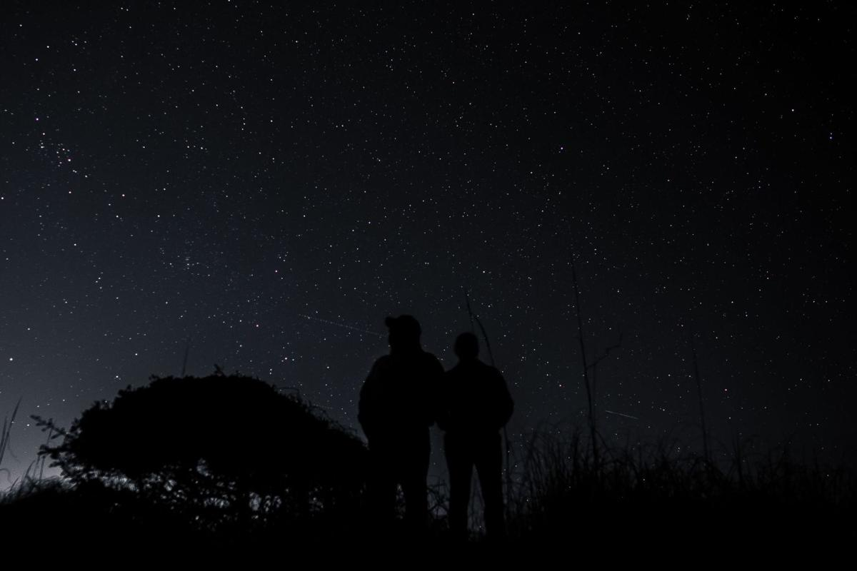 Your 'After Dark' photos are lights out, now send us 'Lowcountry Waterfowl' photos