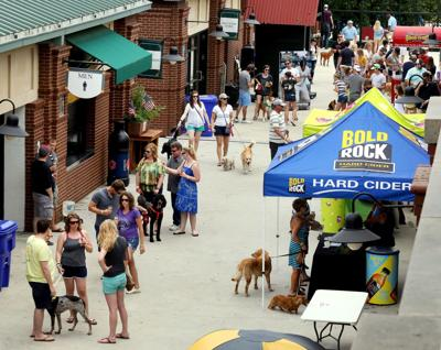 Survey: Area No. 1 in nation for dogs