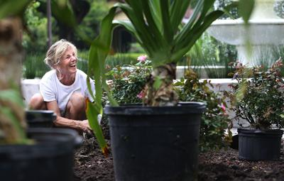 Renovation of Allan Park begins; volunteers sought