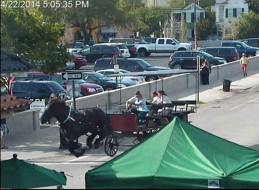 Police release video of horse carriage mishap