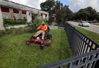 Chicora cut grass.jpg (copy)