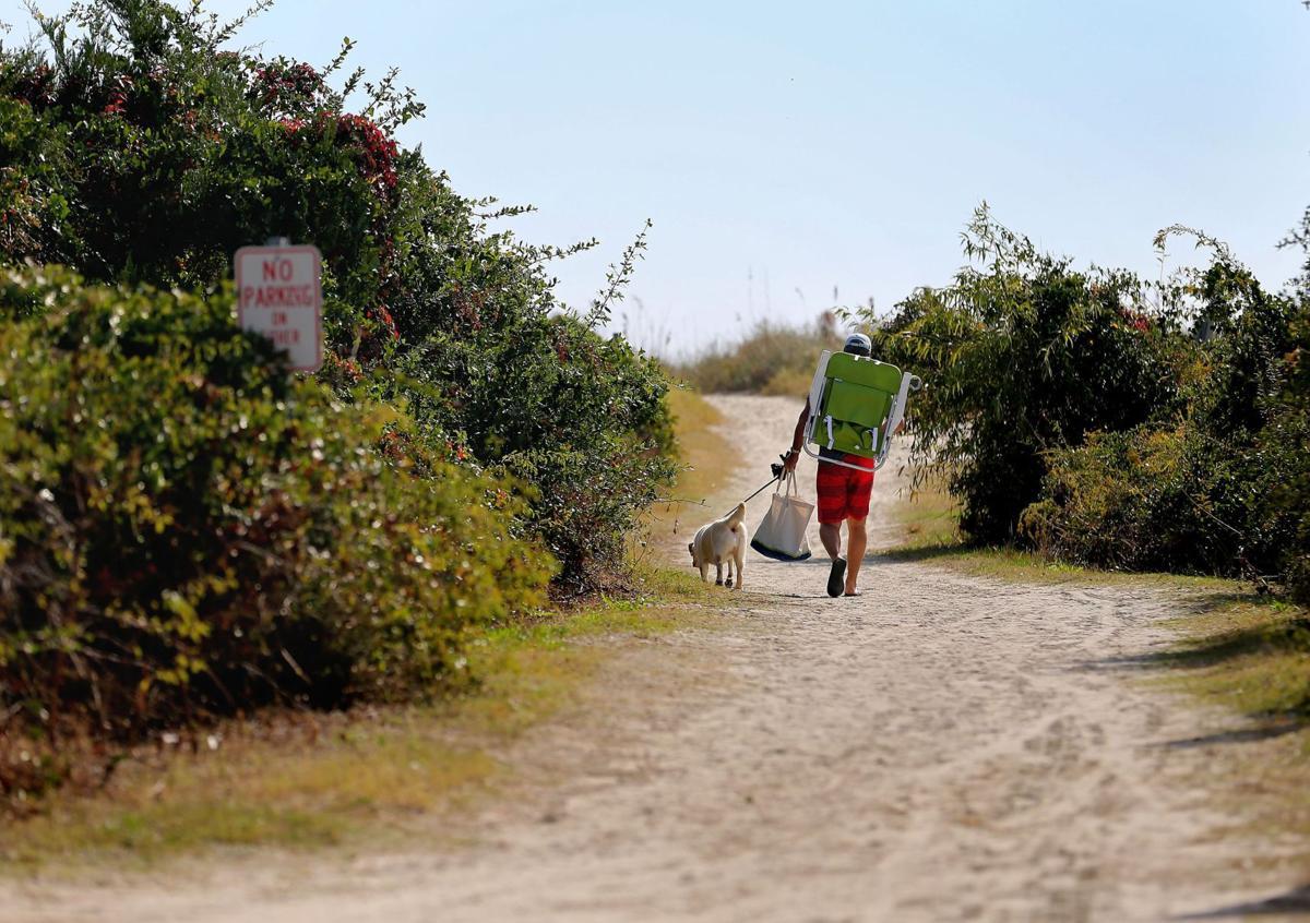 More funding needed for CARTA beach shuttle