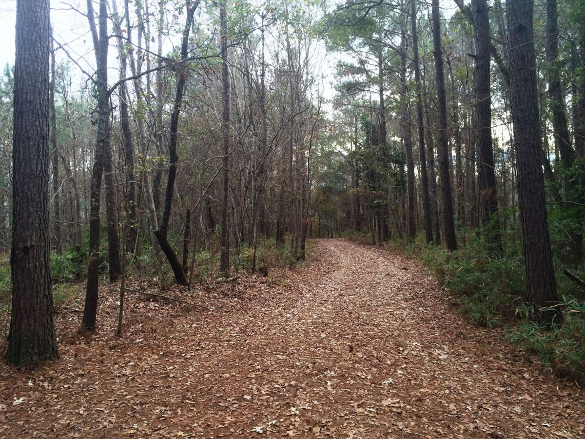 PRC offers two new trails to hikers, runners and cyclists