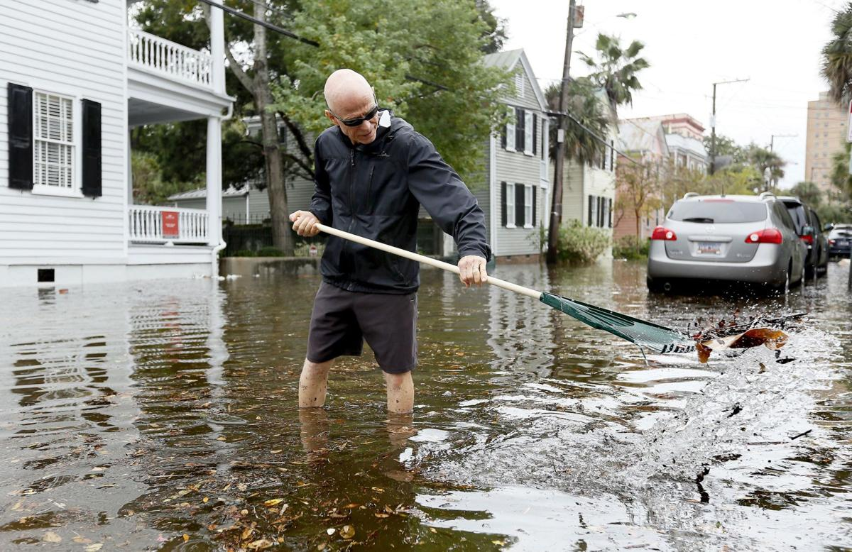 Cutting into carbon; everyday actions can help stem warming, sea rise