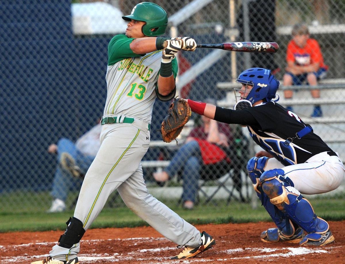 Carolina Rebels To Host Youth Baseball Camp Sports Postandcourier Com