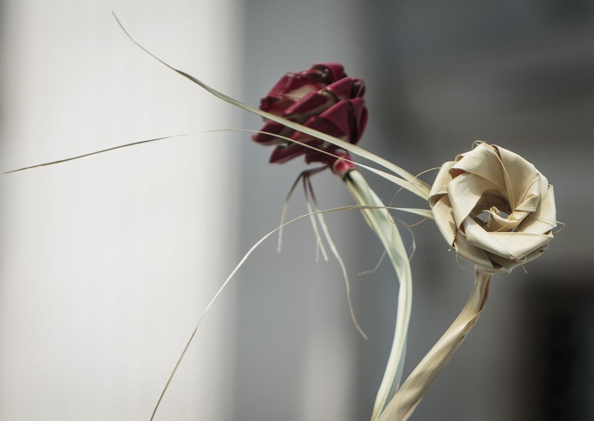 palmetto-rose-_MG_4621.jpg