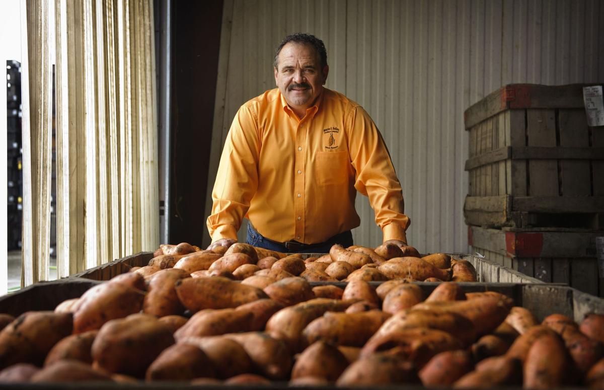 N.C. man's company markets sweet potatoes to nation