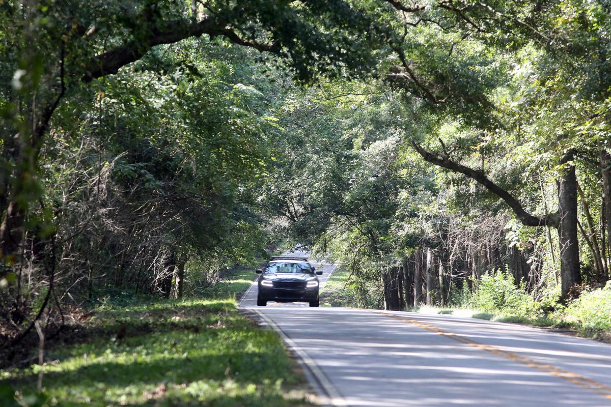 PRINT LEDE Scenic Highway 61