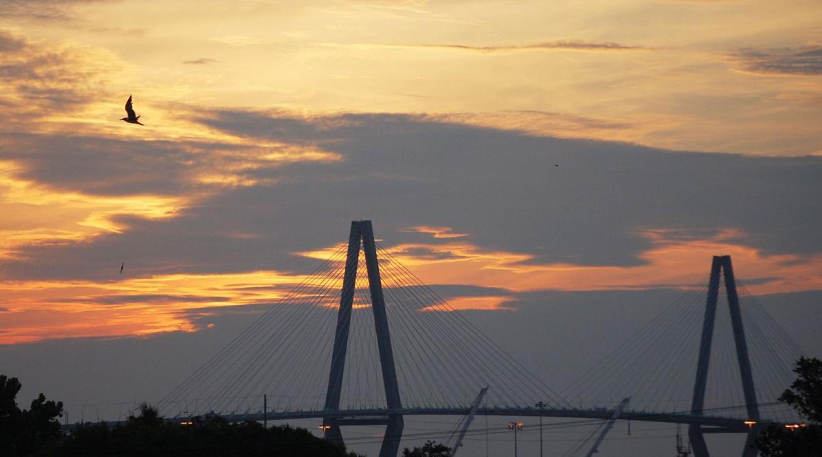 Strive to stop bridge suicides
