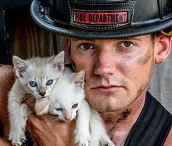 Charleston Animal Society orders more firefighter calendars to handle international demand