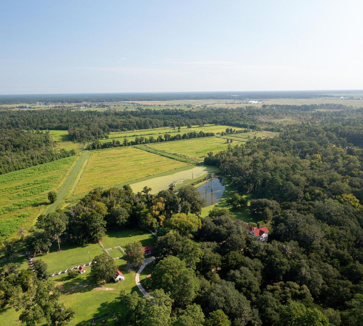 Pano view of Twick