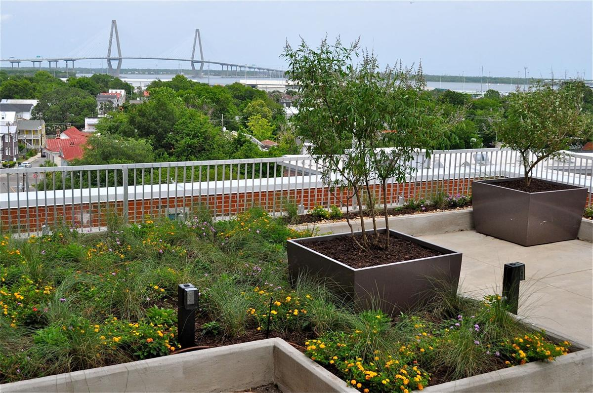 A Green Roof Terrace angle.jpg