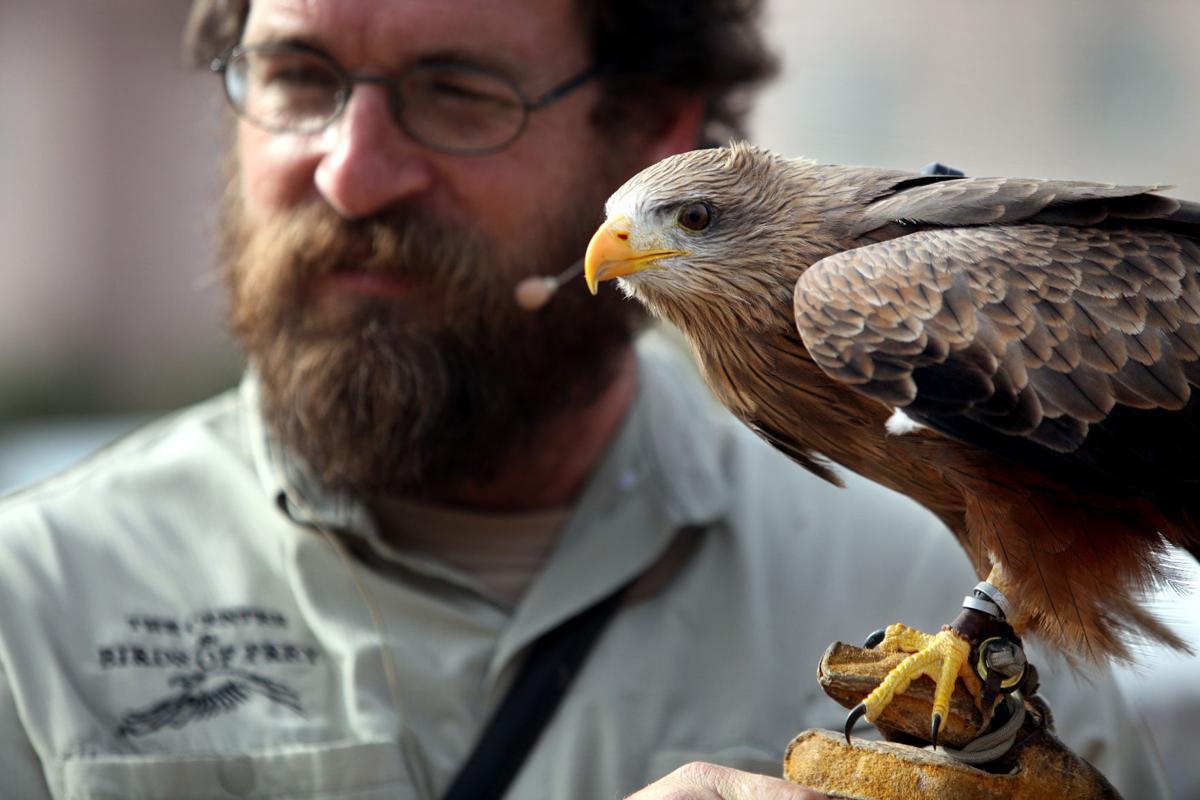 SEWE stalwart Birds of Prey Center turns 25