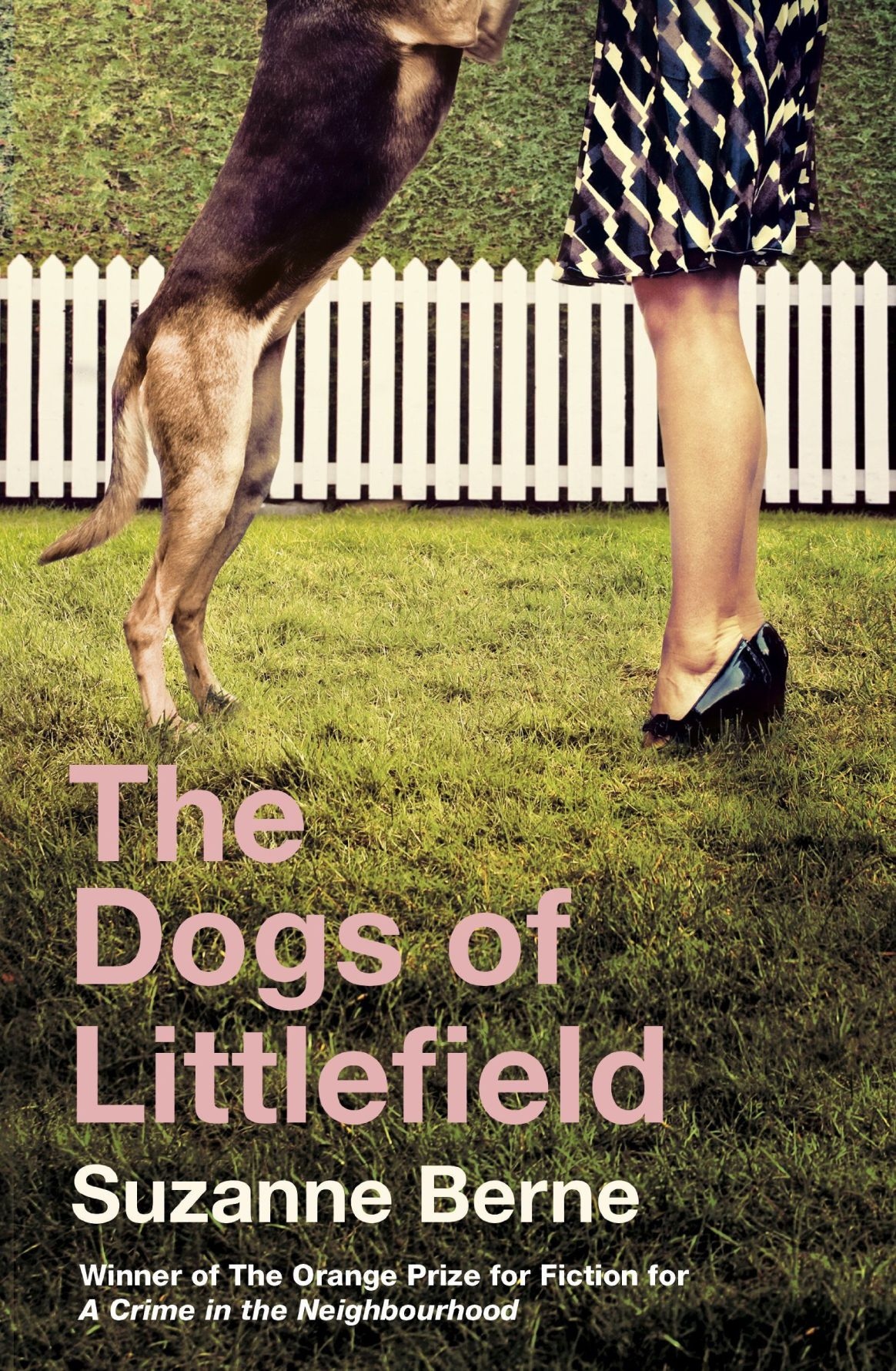 'The Dogs of Littlefield'