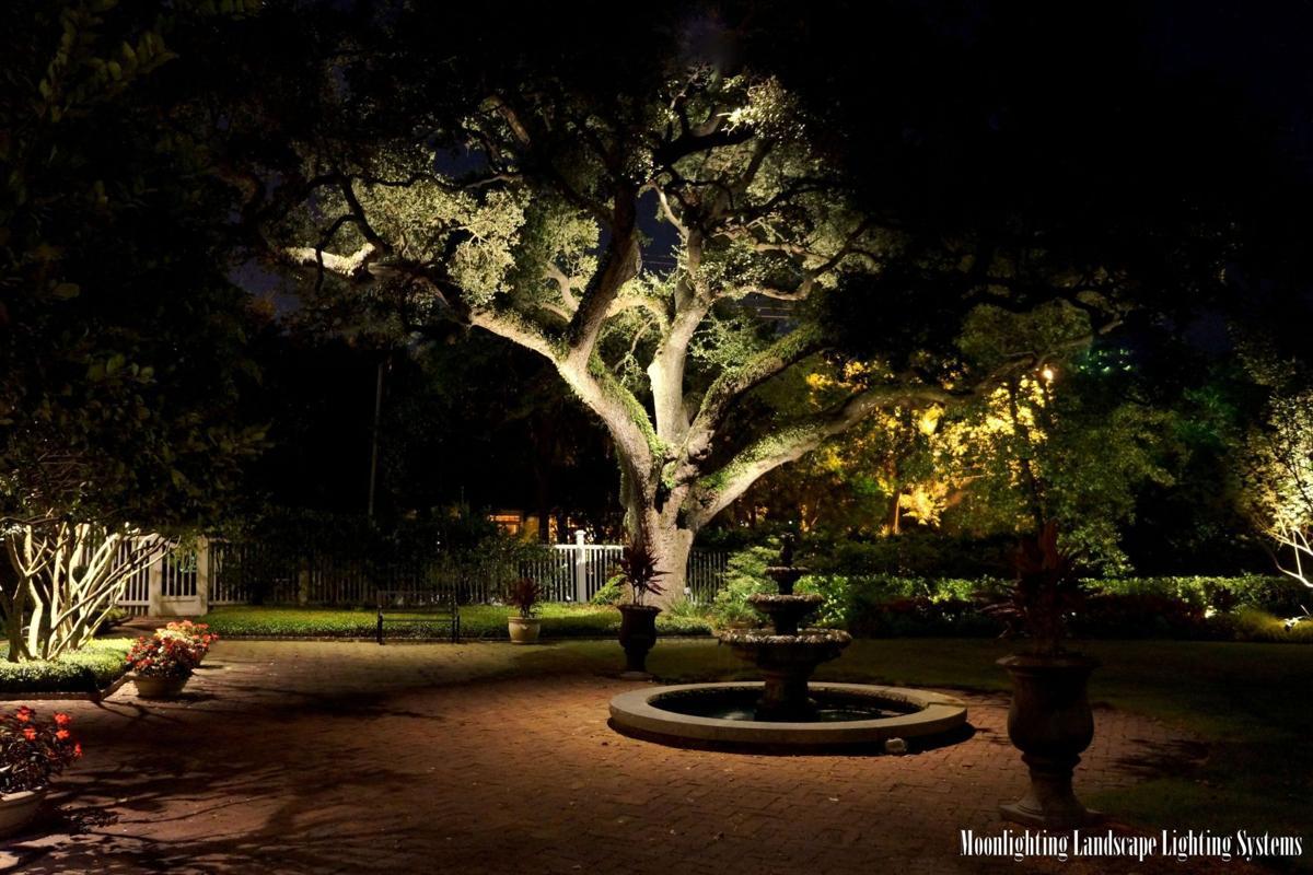 Lighting Landscape With Leds Columnists Postandcourier
