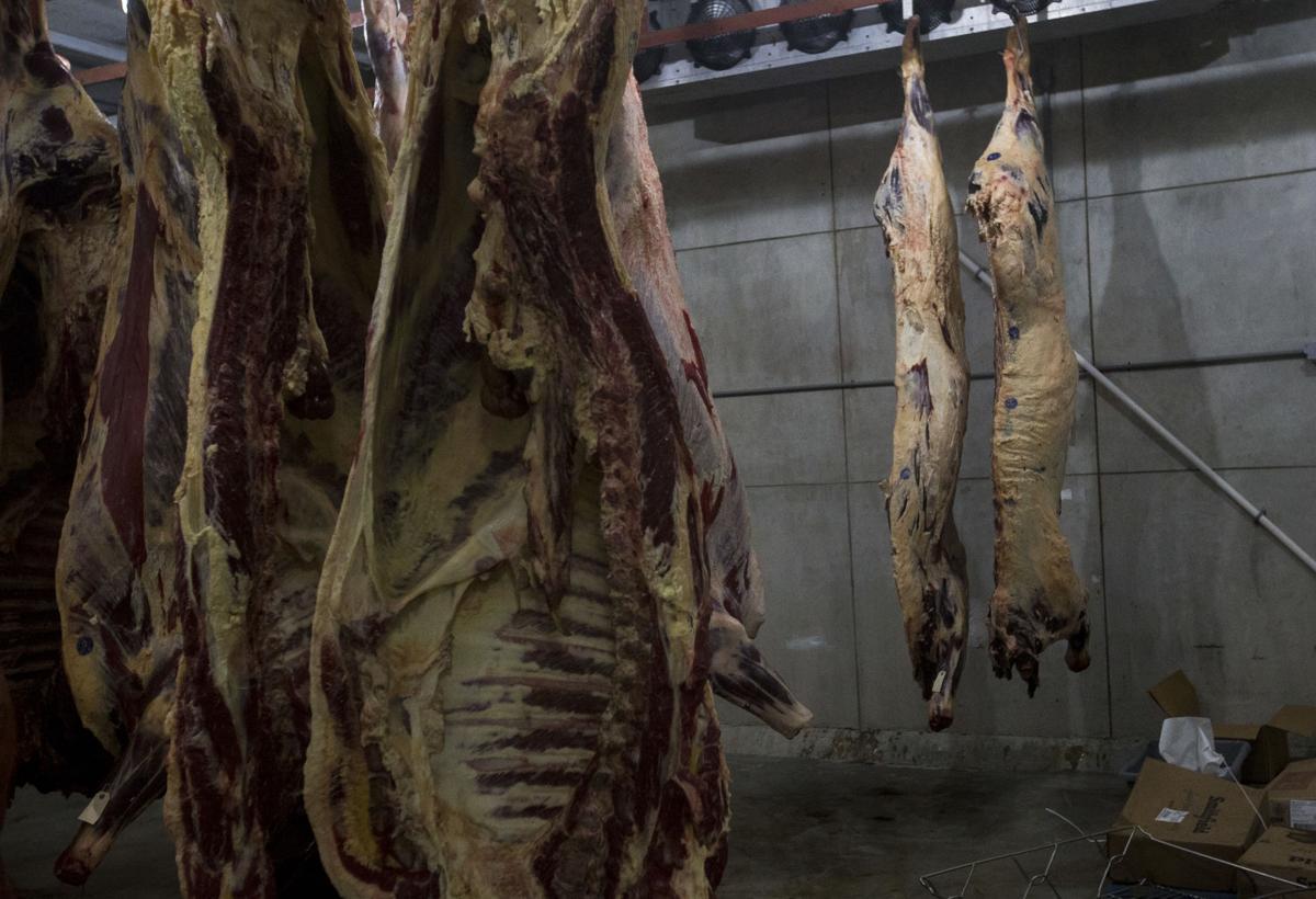 Livestock14.JPG