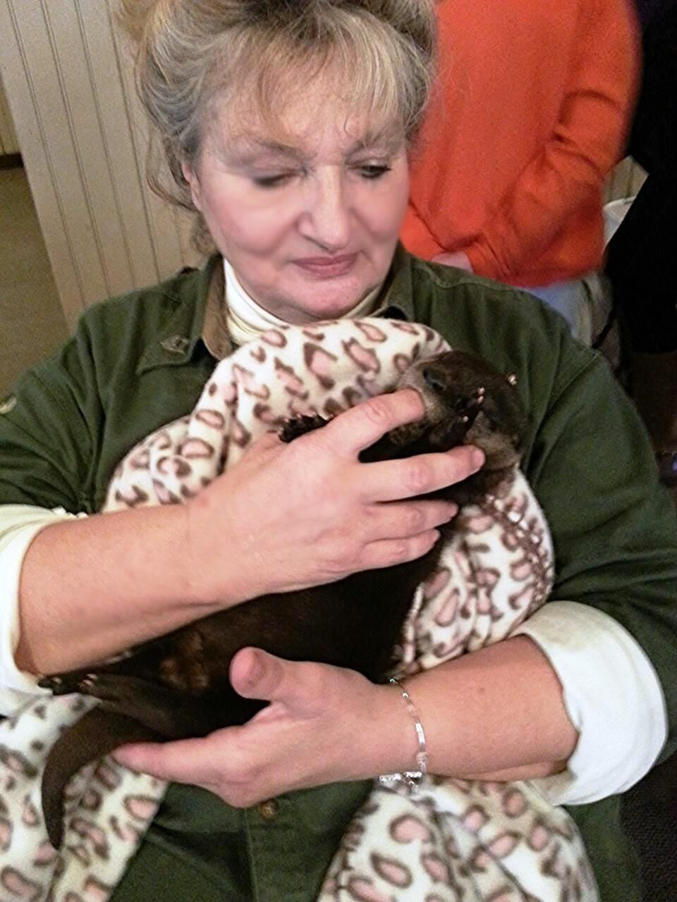 Wildlife rehab group faces issues with easement