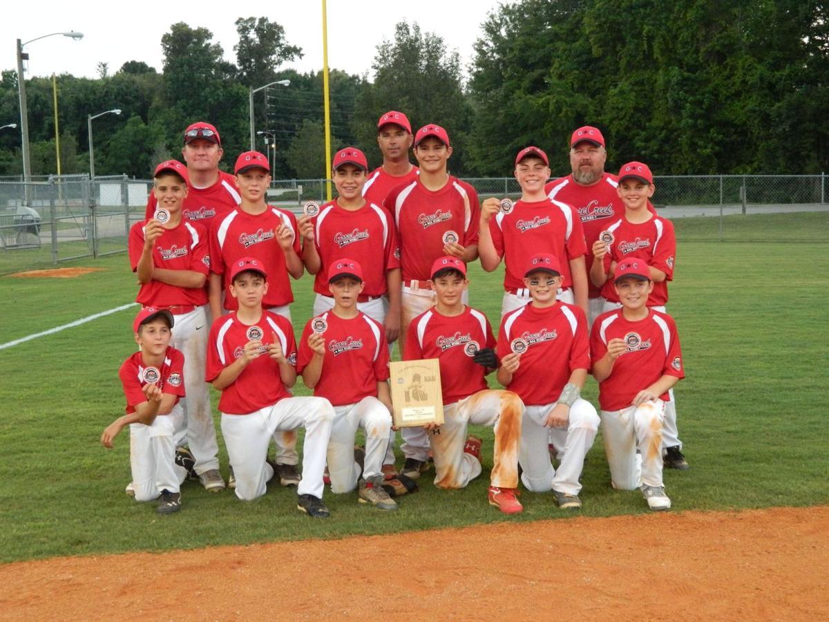Goose Creek 12U All-Stars win district tournament