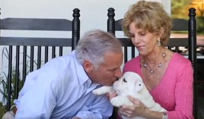 Henry McMaster's new dog Mac
