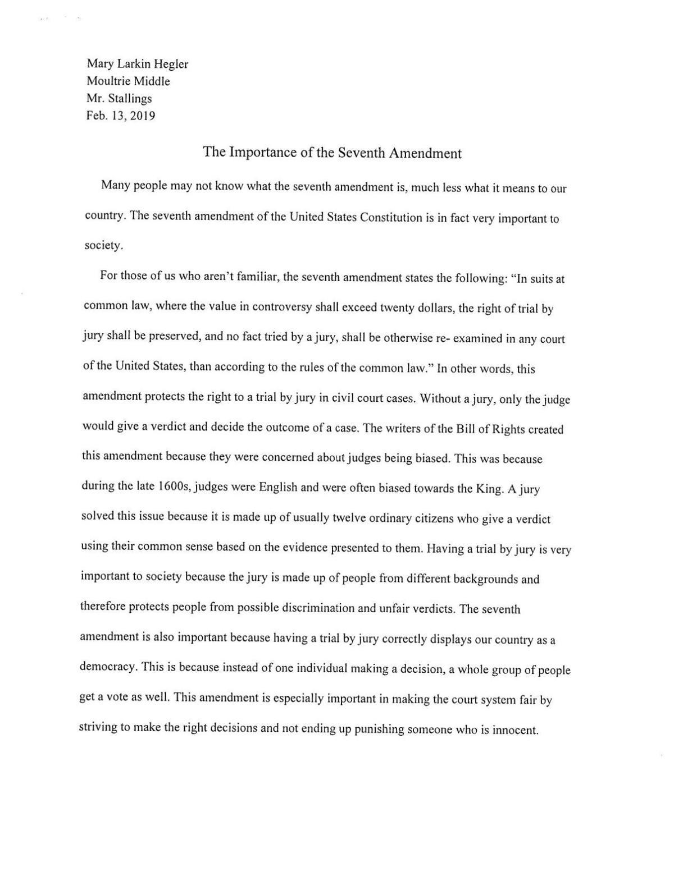 essays the constitution
