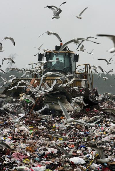 Berkeley Landfill