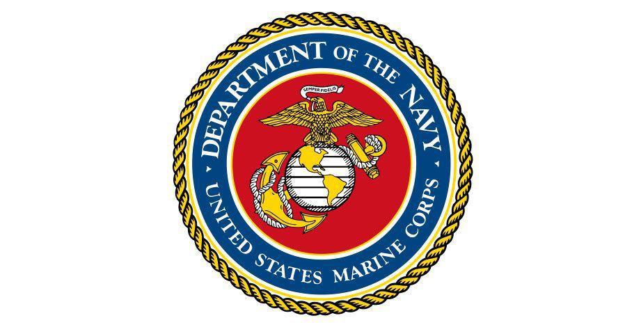 Some 270 Marines train 10 days at Poinsett Range near Sumter