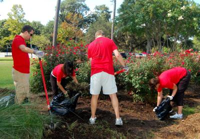 Day of Caring moved to November