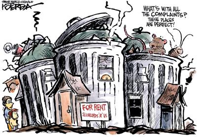 high cost of a roof cartoon
