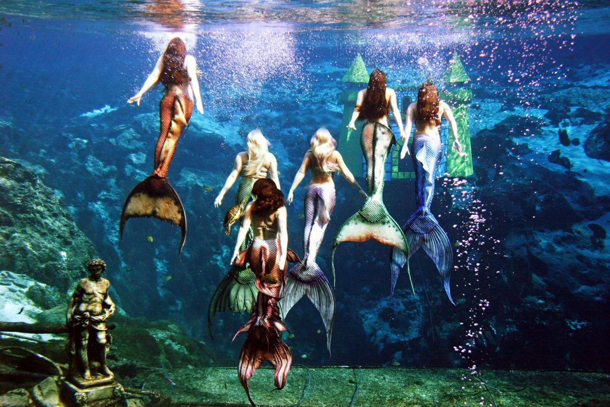 aquarium mermaids