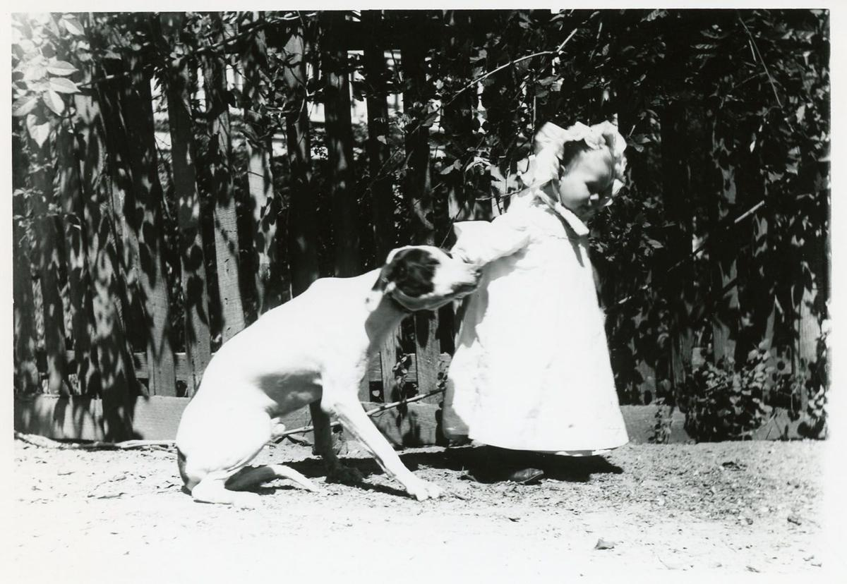 Pets of the Lowcountry past