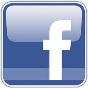 Nonprofit needs votes on Facebook