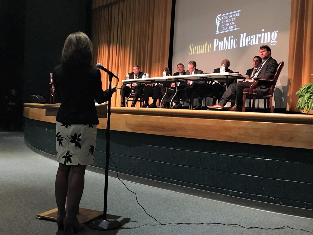 Clover Superintendent Sheila Quinn (copy)