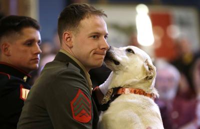 Marine, dog reunited in Iowa