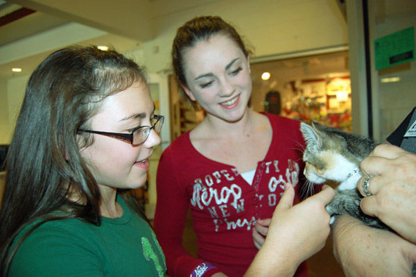 Animals now have a home for the holiday