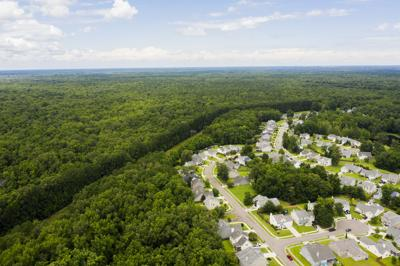 long savannah aerial.jpg