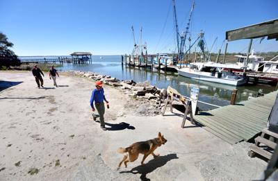 dock Tarvin Seafood.jpg (copy)