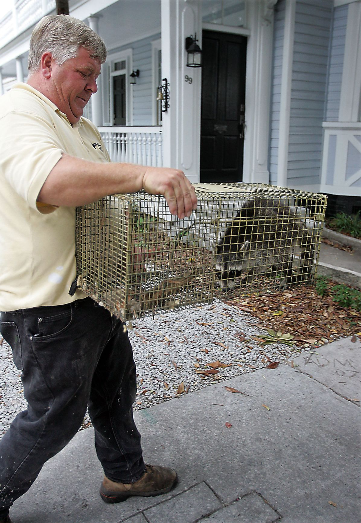 Critters around home?