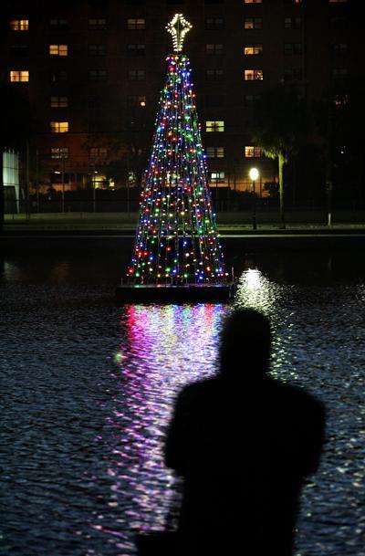 Colonial Lake Christmas Tree (copy)