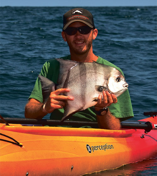 Summer spadefish
